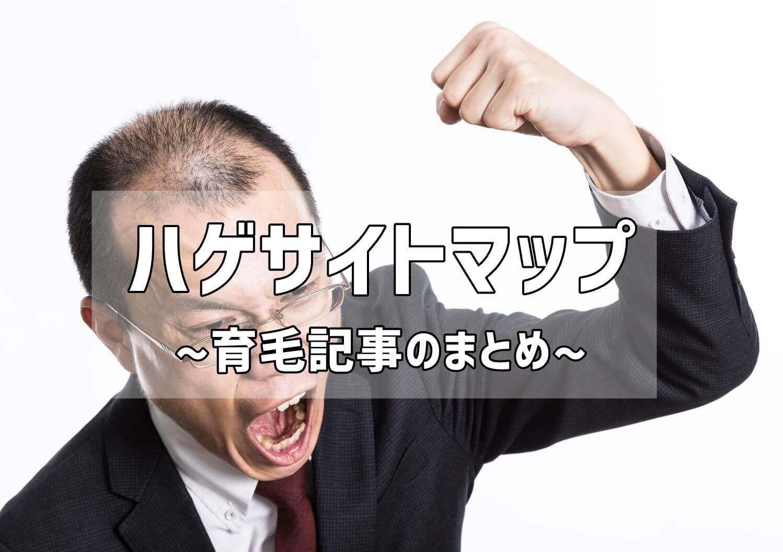 【AGA治療】ハゲサイトマップ~育毛記事のまとめブログ【写真】